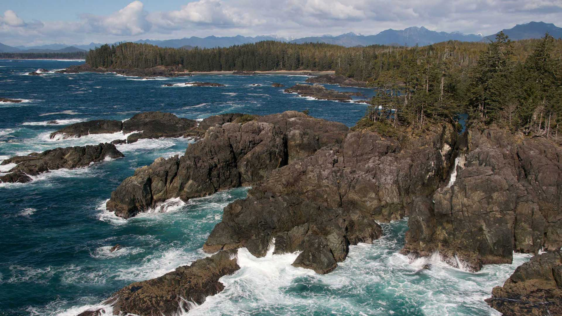 ucluelet-rocky-shore-30
